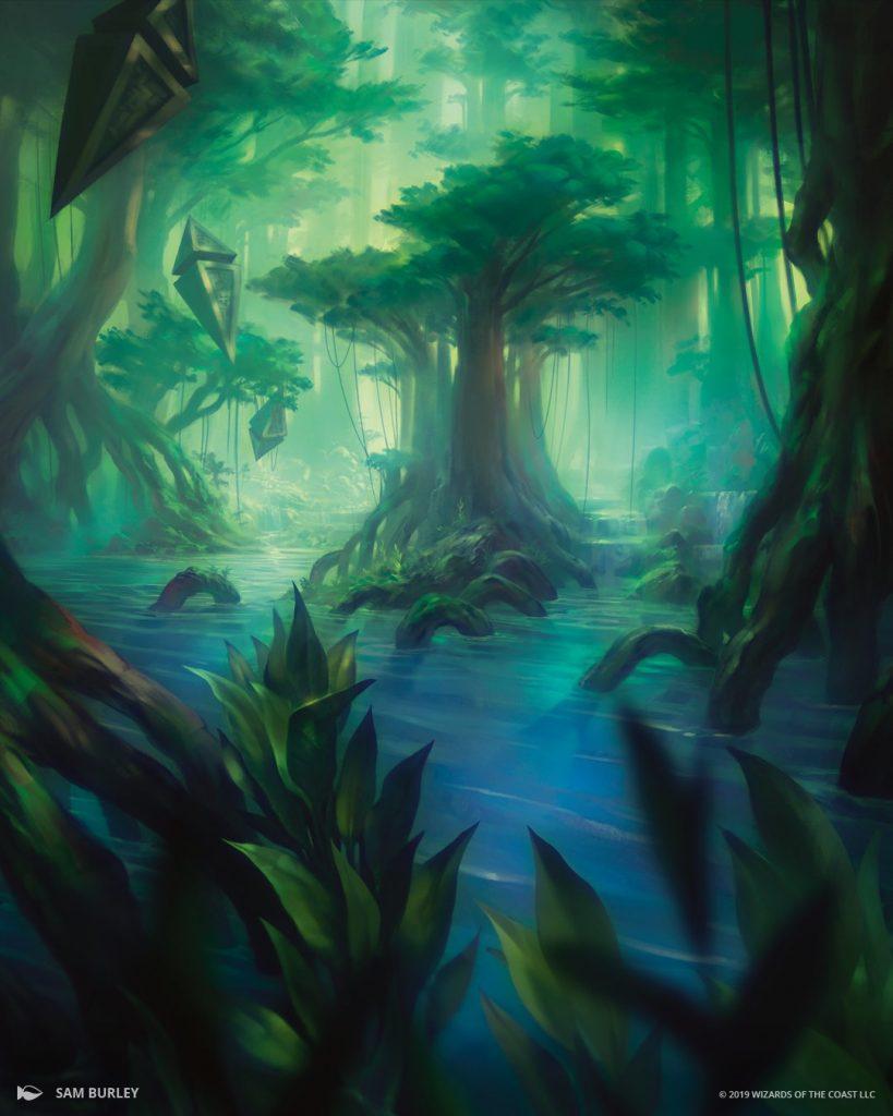 Misty Rainforest - Illustration by Sam Burley