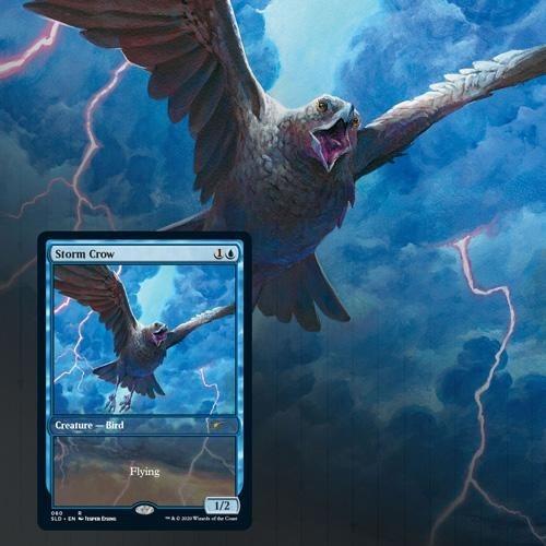 Storm Crow