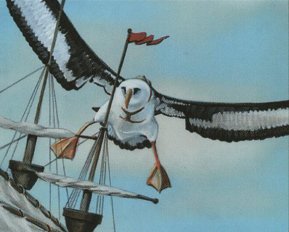 Giant Albatross | Illustration by David A. Cherry