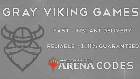 gray viking games banner