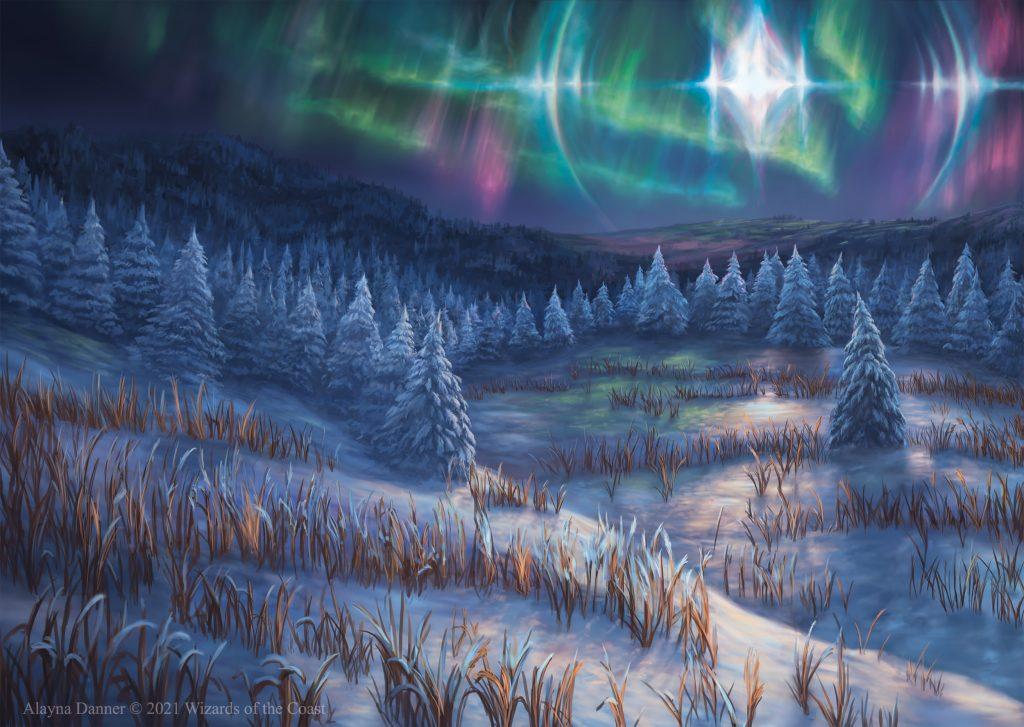 Arctic Treeline - Illustration by Alayna Danner