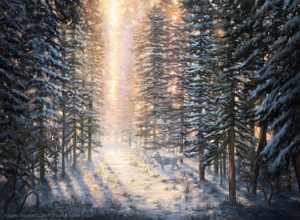 Snow-Covered Forest - Illustration by Alayna Danner