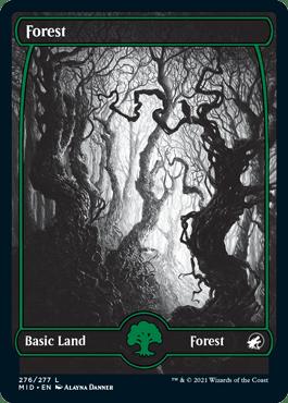 Midnight Hunt Forest 1