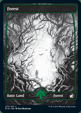 Midnight Hunt Forest 2